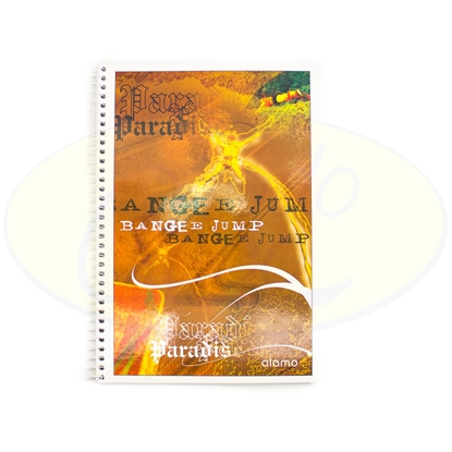 Picture of Cuaderno Alamo 96Hojas 1Raya