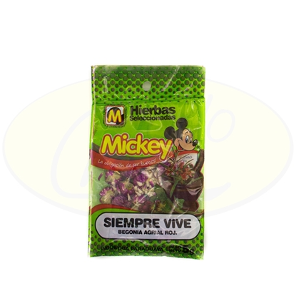 Picture of Siempre Vive Mickey 5g