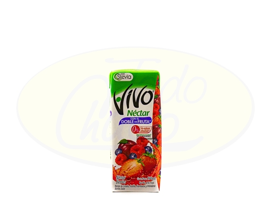 Picture of Jugo Vivo Nectar Berries 190ml