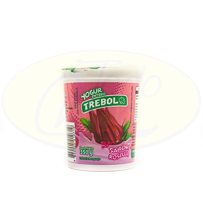 Picture of Yoghurt Entero Trebol Grosella 350g